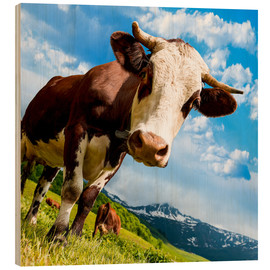Hout print  Curious cow