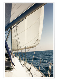 Premium poster  White sails in the open sea