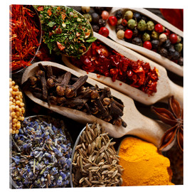 Acrylglas print  Colorful spices and herbs