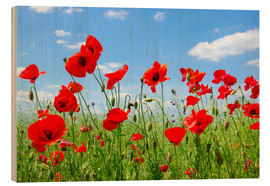 Hout print  Red poppies in green field