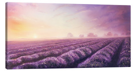 Canvas print  Lavender dream