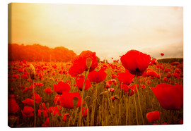 Canvas print  red poppies in misty dayspring
