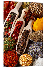 Acrylglas print  Colorful aromatic spices and herbs