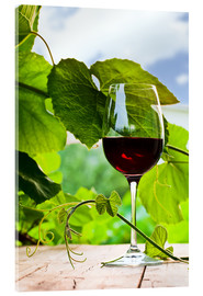 Acrylglas print  glass with red wine in vineyard