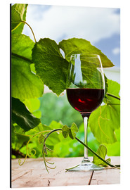 Aluminium print  glass with red wine in vineyard