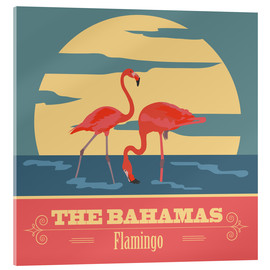 Acrylglas print  The Bahamas - Flamingo