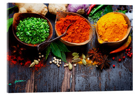 Acrylglas print  Colorful spices diversity