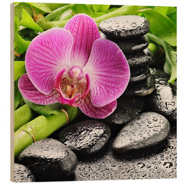 Hout print  Zen stones and pink orchid