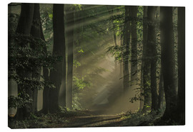 Canvas print  Mysterious Way - Roelof de Hoog