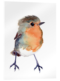 Acrylglas print  Baby robin in watercolour - Verbrugge Watercolor