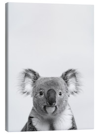 Canvas print  Koalaty control  II - Finlay and Noa