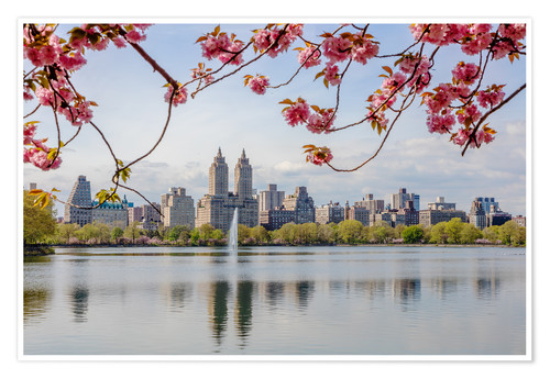 Premium poster Buildings reflected in lake with cherry flowers in spring, Central Park, New York, USA