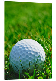 Acrylglas print  Golf ball in the grass