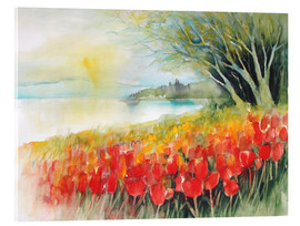 Acrylglas print  Tulips blossoms in Ueberlingen on Lake Constance - Eckard Funck