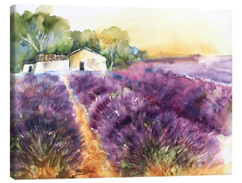 Canvas print  Lavender field in Provence - Eckard Funck