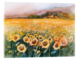 Acrylglas print  Sunflower field in the Luberon, Provence - Eckard Funck