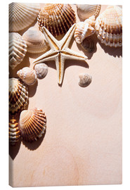 Canvas print  Starfish and shells
