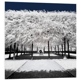 PVC print  Infrared rime in the park - Philippe HUGONNARD