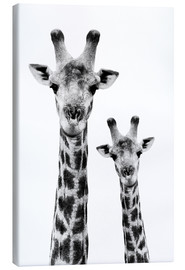 Canvas print  Giraffe mother with child - Philippe HUGONNARD