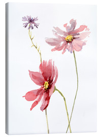 Canvas print  Cosmos flower and cornflower - Verbrugge Watercolor