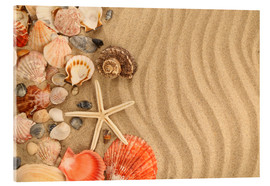 Acrylglas print  Shells and starfish on sand