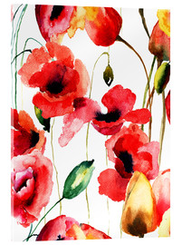Acrylglas print  Poppy and Tulips flowers