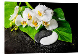 Acrylglas print  White orchids and Yin-Yang stones
