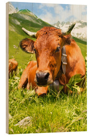 Hout print  Cow with bell on mountain pasture