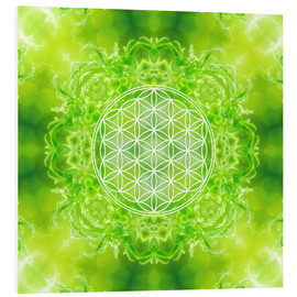 PVC print  Flower of Life - Healing Power of Nature - Dolphins DreamDesign