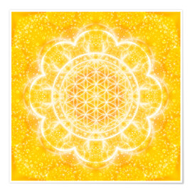 Premium poster  Flower of life - light power - Dolphins DreamDesign