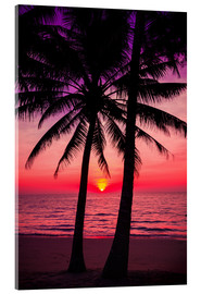 Acrylglas print  Palm trees and tropical sunset