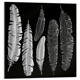 Acrylglas print  Feathers in silver