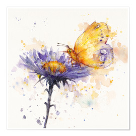 Premium poster Flowers & flutters (butterfly & flower)