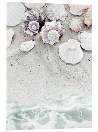 Acrylglas print  Sea Beach with Shells