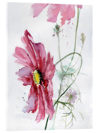 Acrylglas print  Cosmos flower watercolor - Verbrugge Watercolor