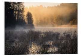 PVC print  Foggy morning on the lake - Christian Möhrle