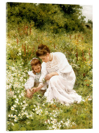 Acrylglas print  When picking daisies - Hermann Seeger