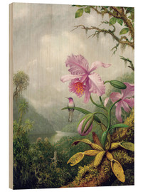 Hout print  Hummingbird Perched on an Orchid Plant - Martin Johnson Heade