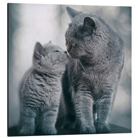 Aluminium print  Kisses for you - Heidi Bollich