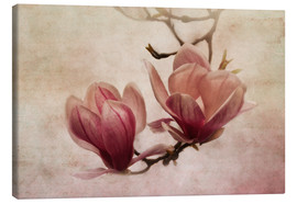 Canvas print  greetings of spring - Claudia Moeckel