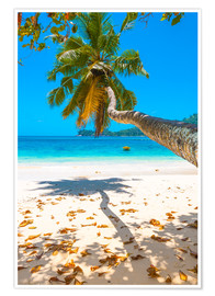 Premium poster Sea view with palm tree