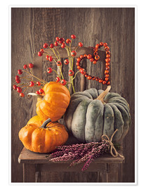 Premium poster Still life with the pumpkins