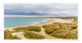 Premium poster Beach in the national Park Thy