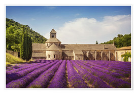 Premium poster Senanque Abbey with lavender fields