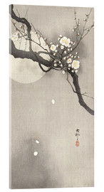 Acrylglas print  Plum Blossoms at Night - Ohara Koson