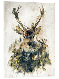Acrylglas print  Deer nature, surrealism - Barrett Biggers