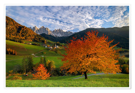 Premium poster Funes Valley in autumn, Dolomites, South Tyrol, Italy