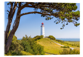 Acrylglas print  lighthouse Dornbusch at Hiddensee