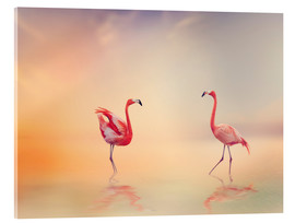 Acrylglas print  Two Flamingoes in The Lake at Sunset