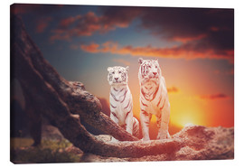 Canvas print  Two white tigers